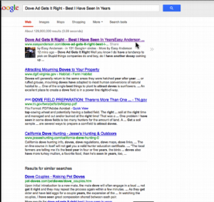 Google Indexing Fast